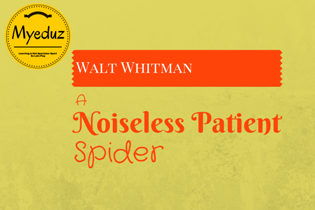 A Noiseless Patient Spider by Walt Whitman
